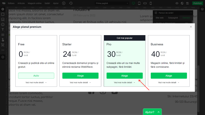 cum-sa-faci-un-site-step15-activare-plan-premium