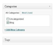 Categorii Blog (screenshot)